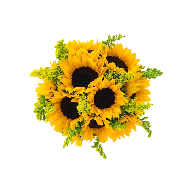 Bouquet Sunflower Silver