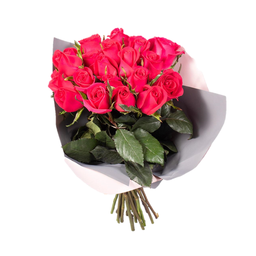 Rosas Platinum